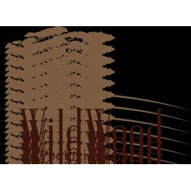 Deski tarasowe WILD WOOD